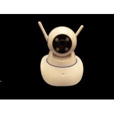 Wi-Fi camera WF-10A
